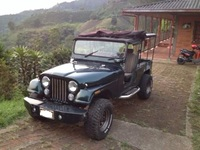 Vendo Jeep Willys. - Carros - Pereira