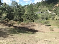 Gangazo Guarne Vendo Lote Rural Area 9.000 m2. Excelente Ubicacion - Terrenos - Guarne