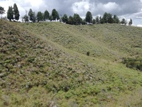Vendo Lote Rural en Guarne Conjunto Campestre 20.000 m2 - Terrenos - Guarne