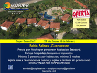 Ecoplaya Resort  - Turismo - La Cruz