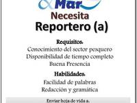 Solicitamos Reportero (a) Manta - Marketing y Publicidad - Manta