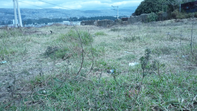vendo un lote de 800m2..de oportunidad en chillogallo - Terrenos - Quito
