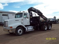 1995 International 9200	Grúa Hiab 260-3, Vendo  - Camiones / Industriales - Cuauhtemoc