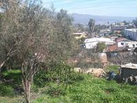 Se vende terreno en ampleacion Bella Vista - Terrenos - Ensenada