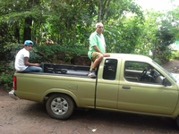 Nissan Frontier - Camionetas / 4x4 - Jinotepe
