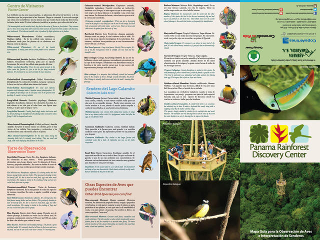Panamá Rainforest Discovery Center  - Turismo - Chagres