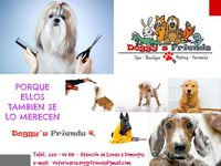 Veterinaria, Spa Para Mascotas – Doggys Friends - Mascotas - Lima
