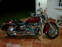 vendo motora  Honda Shadow 7.5 - Motos - Luquillo
