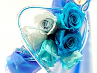 Sending flowers is a priceless gift for Mother's Day in Bangalore - Otros Servicios - Anderson