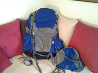 Alpine Back Pack - Ropa / Accesorios - Houston