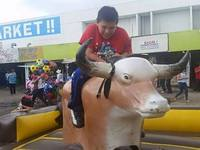 Mechanical Bulls For Rent, El Toro Loco Show (Houston)  - Fiestas / Animación - Houston