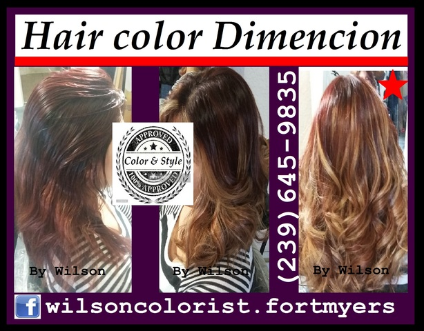 COLOR BALAYAGE, OMBRE by WILSON - Terapias / Yoga - Cape Coral