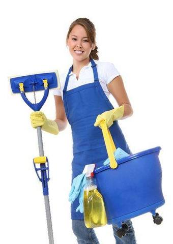 cleaning services  - Limpieza / Hogar - Boston