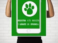 Regístrate a tu mascota y ganate un iPhone 6 - Animales en General - Montevideo
